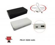 Powerbank PB-01